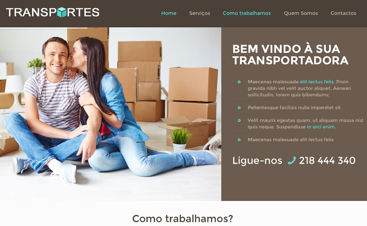 Website para transportadora